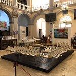 Museo Civico Emanuele Barba照片