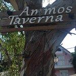 Zdjęcie Ammos Taverna