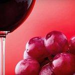 Grecos Grill & Wine Bar照片