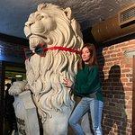 Zdjęcie white Lion