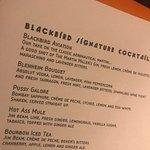 Blackbird照片