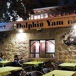 Dolphin Yam照片