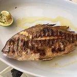 Zdjęcie Kanali Restaurant