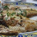Uno de los pescados del día a la plancha