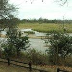 Nkuhlu Picnic Site - Sabie River