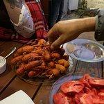 Photo of Los Crayfish Hermanos