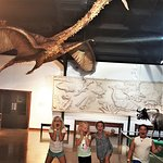 Our Juan Infante International Hall has something for everyone, including a Quetzalcoatlus.
