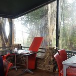 صورة فوتوغرافية لـ Shali's Cafe