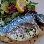 Porta Marina Seafood照片