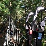 Canopy Adventure Park