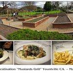 Herb Garden & Meal