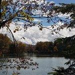 Bilde fra Hotel Natural Garden Nikko