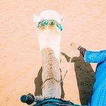 Morocco Shining Tours