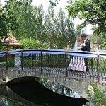 Свадьбы с выездной регистрацией в нашем красивом парке