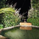 Tra ulivi e fontane