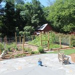 The Vegetable Garden and back patio