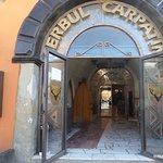 Restaurant Cerbul Carpatin Foto