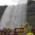Gray Line of Niagara Falls, Ontario