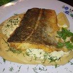 Photo of Restauracja Kutter