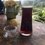 The Story Coffee – fénykép