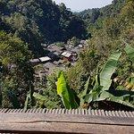 ภาพถ่ายของ ชมนกชมไม้