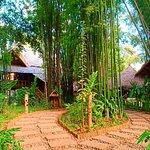 ภาพถ่ายของ Luang Prabang Bio Bamboo
