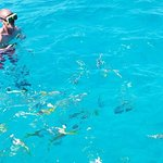 Spirit Snorkeling LLC