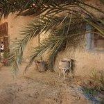 صورة فوتوغرافية لـ Al-Babinshal
