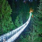 包括卡皮拉诺吊桥的温哥华之旅