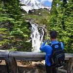 Best of Mount Rainier National Park from Seattle: All-Inclusive Small-Group Tour