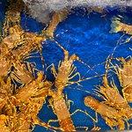 大江戶町活海鮮鐵板燒照片