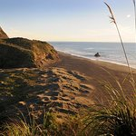 Full-Day Wild West Coast Photo and Discovery Tour including Lunch from Auckland