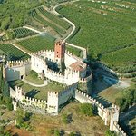 Soave: white wines and visit to the castle