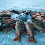 Private Tour: Ice Fishing In Yakutsk