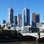 Half-Day or Full-Day Tour with Private Guide from Melbourne