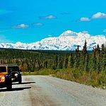 Denali Highway Jeep Excursion