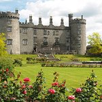 Kilkenny, Wicklow Mountains, Glendalough, Sheep Dog Trials, Day Trip from Dublin