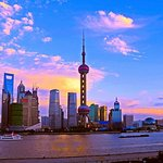 Flexible Shanghai Private Day Tour from Nanjing by Bullet Train