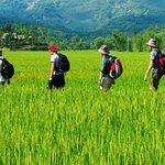 Mai Chau - Pu Luong - Ninh Binh 4 days tour: Enjoy rural life & Eco tourism