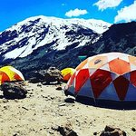 8 days Lemosho route Climbing Mt. Kilimanjaro