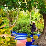 Marrakech Full Day Guided City Tour - Private Tour