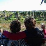 Excursão vinícola de dia inteiro em Niágara com almoço em Niagara-on-the-Lake e passeio de barco opcional