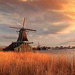 Le città e i mulini dell'Olanda fanno un giro in autobus da Amsterdam
