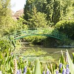 Giverny including Monet's Gardens and Gravesite Small-Group Half-Day Trip