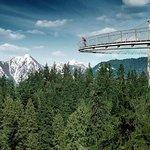 Private Tour: Vancouver Sightseeing and Capilano Suspension Bridge