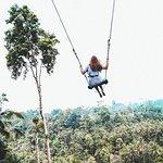 Le meilleur de la visite d'Ubud avec sa balançoire dans la jungle