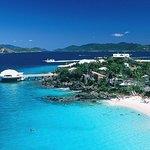 Skip the Line Coral World Ocean Park General Admission Ticket