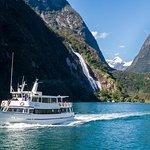 Cruise Milford NZ小型精品游轮体验