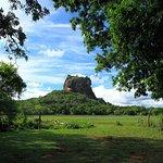 Sigiriya Rock and Wild Elephant Safari from Negombo (Private Day Tour)