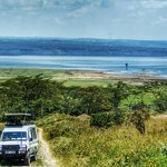 Full-Day Lake Nakuru National Park Private Tour from Nairobi
